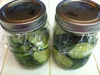 cucumbers (2)