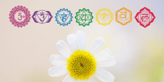 chakras-and-essential-oils-doterra
