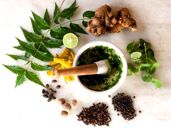 kind-of-herbs-1469451825