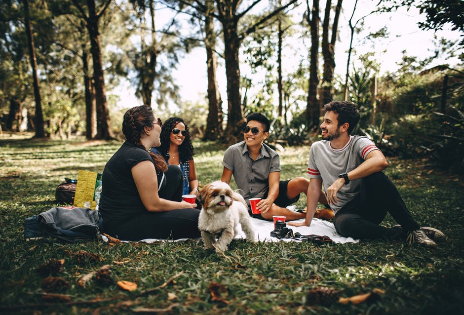 friends in sitting in park