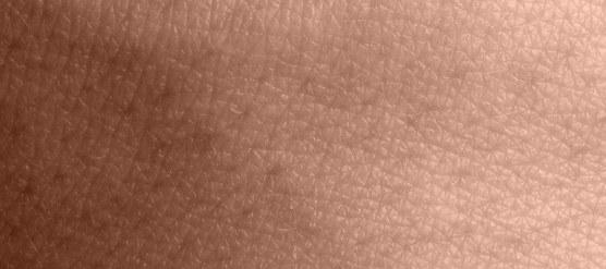ECS-and-Skin_2