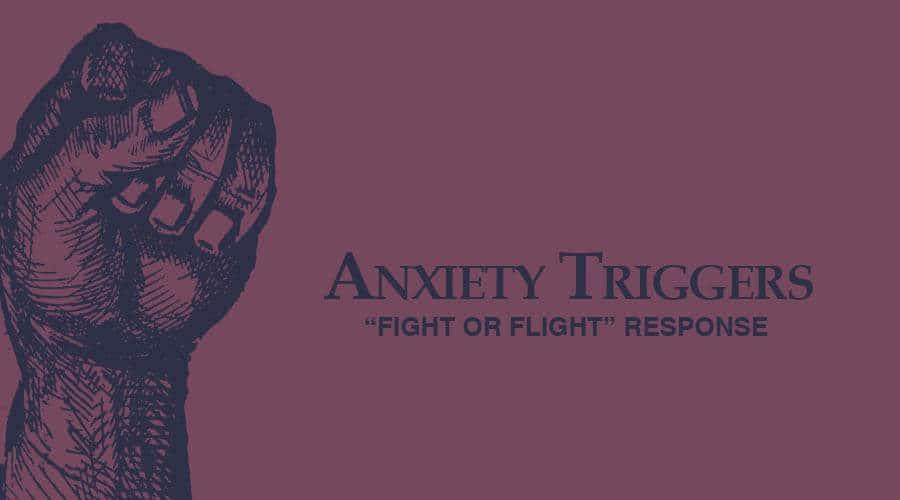 anxiety-endocannabinoid-system_1