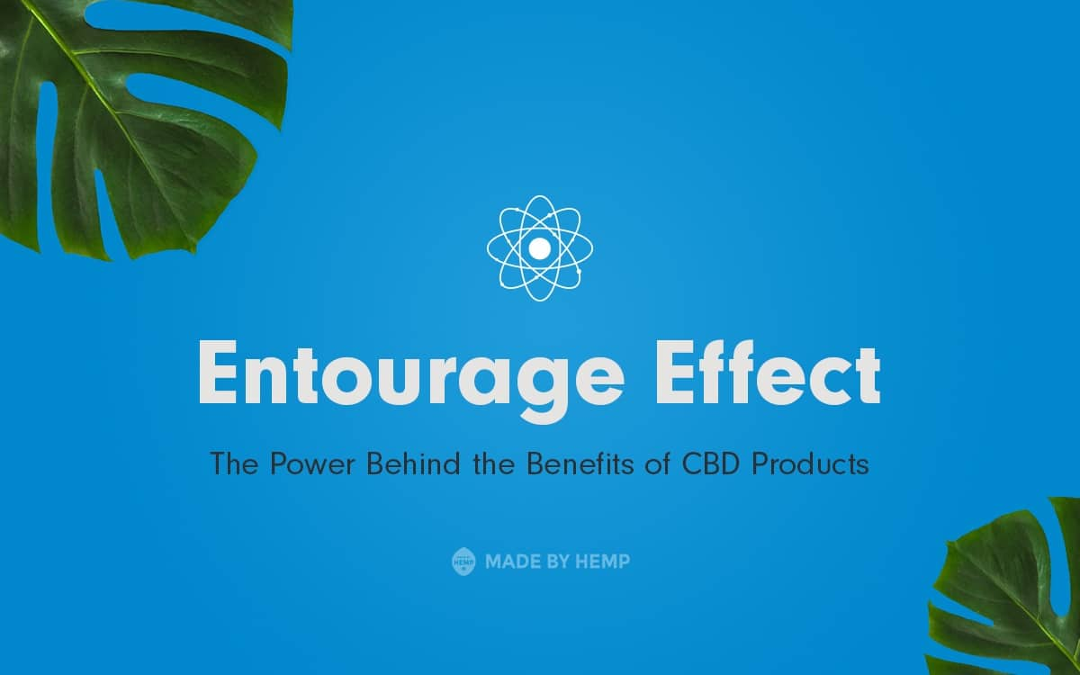 Entourage Effect: The Power Behind the Benefits of CBDProducts