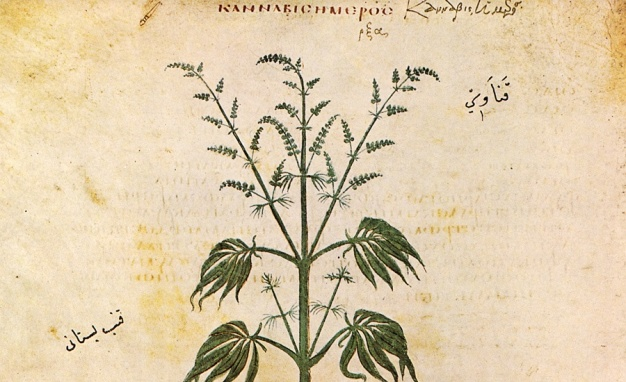 hemp-ancient_1